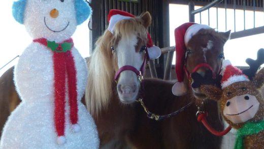 Santa & Friends: Las Tiendas