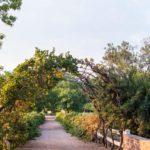 The Farm at Agritopia Arizona